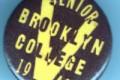 Brooklyn Schools